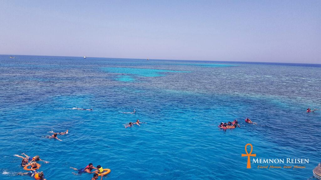 Delfinschwimmen Hurghada Ausflug